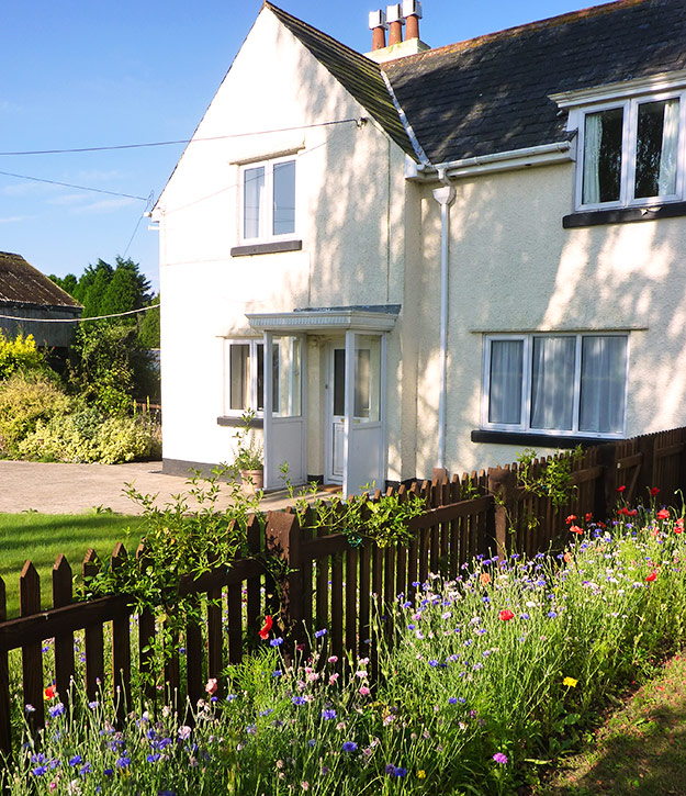 Sparrow's Nest, Holiday Cottage, Dawlish, Devon